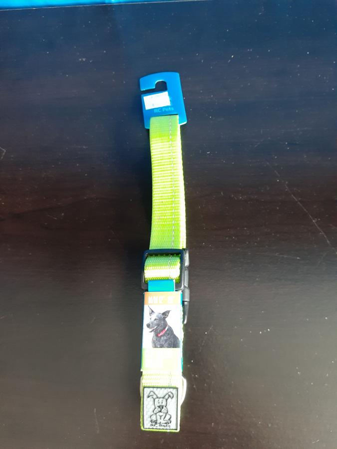 RC Pets Lime Collar