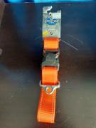 Rogz Orange Collar