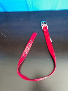 Top Paw Red Collar