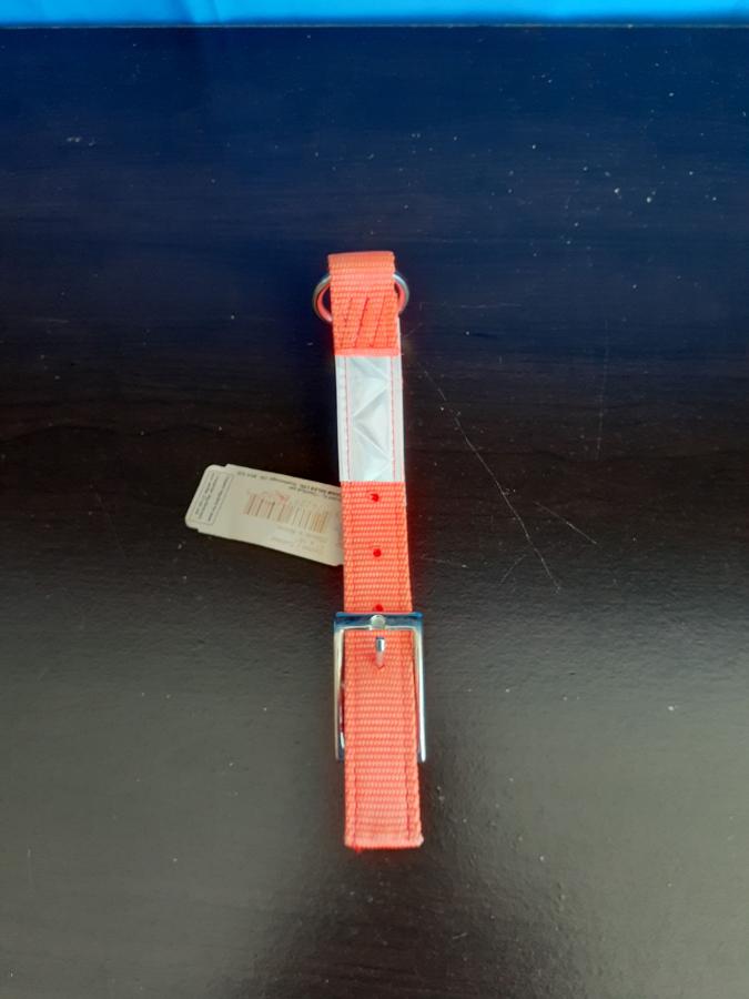 AK9 Orange Collar