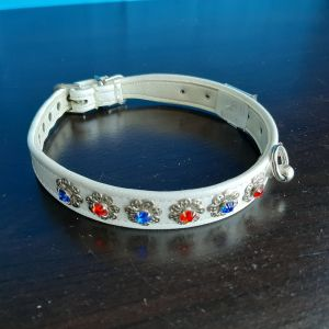 Red Blue Jeweled Collar