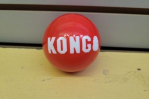 KONG Signature Ball Bulk Lg