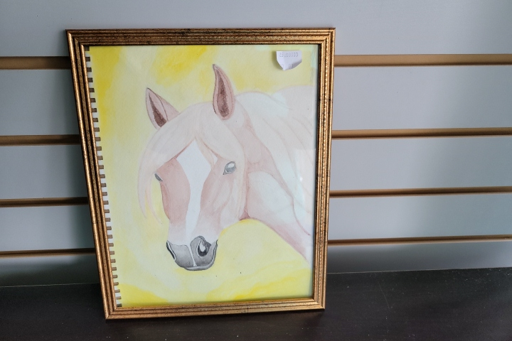 Mariah's Paintings Horse